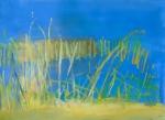 Fen reeds, Wicken, Cambridgeshire. 71.7cmx49.7cm