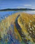 Reedbeds, early morning, Suffolk 2. medium