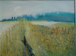 Suffolk reedbeds1.large